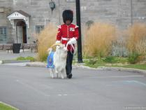 Maitre Chevrier and Batisse the goat at La Citadel in Quebec.jpg